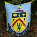 Example of a custom designed printed polyester football crest cushion made by Teritex