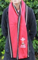 Image of custom designed jacquard knitted soccer scarf manufactured by Teritex Sportswear